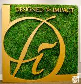 Designed to Impact 2017